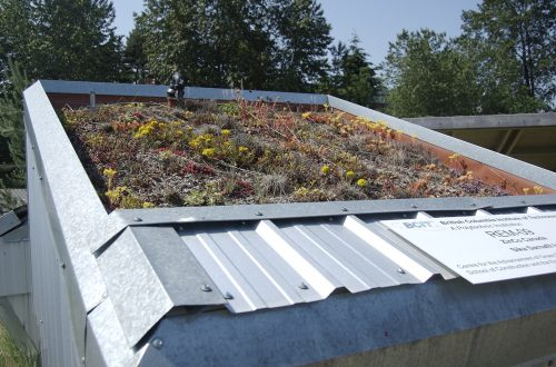 sample-3 green roof installation in brooklyn