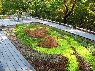 green roof installaler