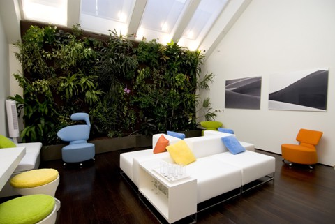 Here is a great example of how you could do a living wall installation in a Brooklyn brownstone