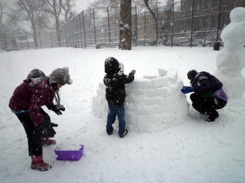 brooklyn green contractors building igloo