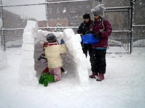 brooklyn green contractors building igloo 3