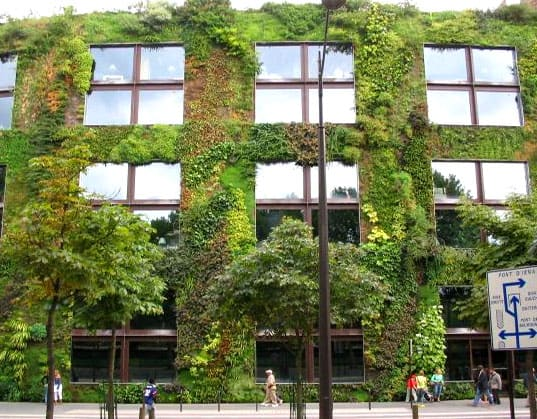 vertical garden installation