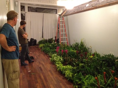 Brooklyn green wall installer