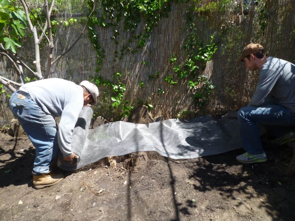 A fresh start for a contaminated brooklyn garden eco for Soil contamination