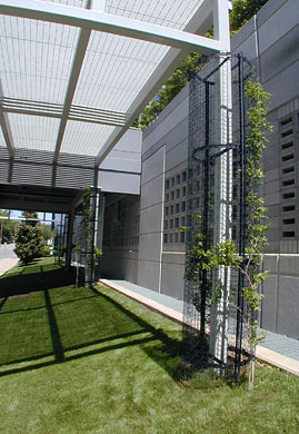 Dallas international center Greenscreen trellis