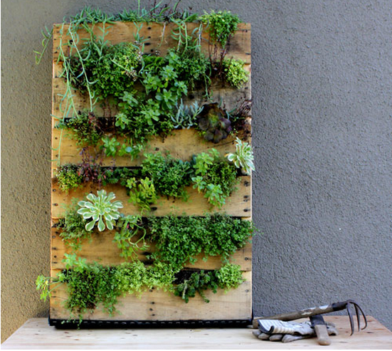 diy vertical gardens eco brooklyn