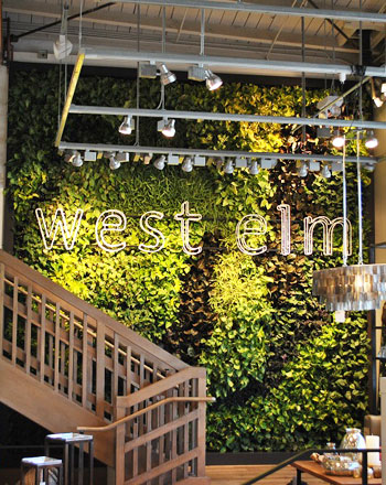 westelm L.A. greenwall