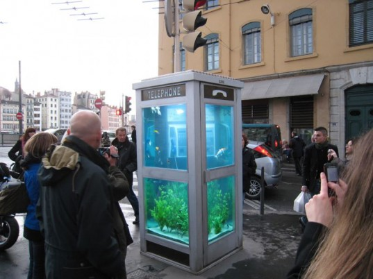 Aquarium phone box Lyon france