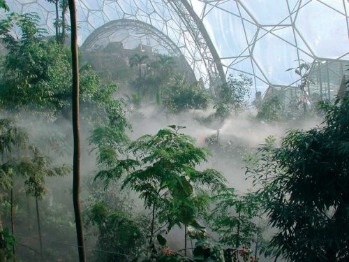 The eden project biomimicry