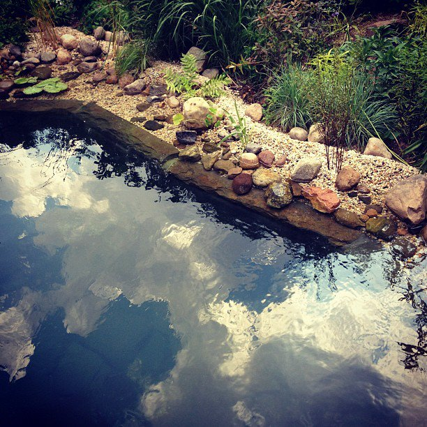 Natural Pool Installers