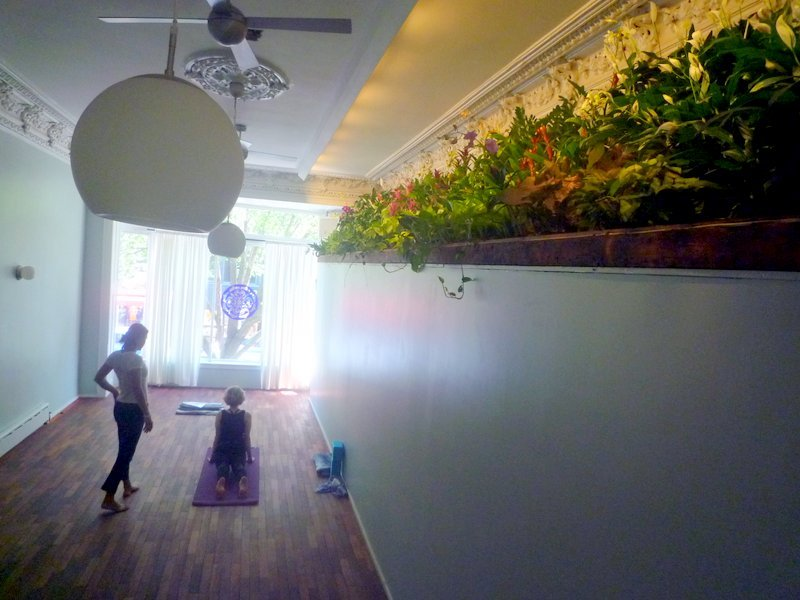 We disguised a hallway with a living wall to provide relaxation in a yoga studio.