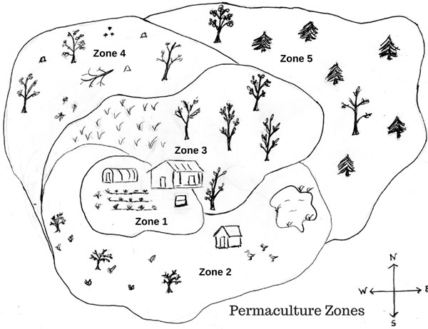 Brooklyn Permaculture zones