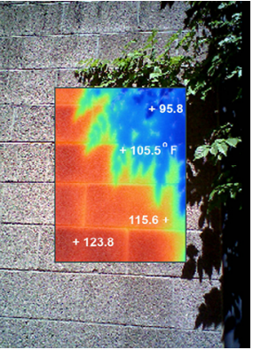 A thermal camera reveals the cooling factor of a green wall over solid surfaces.