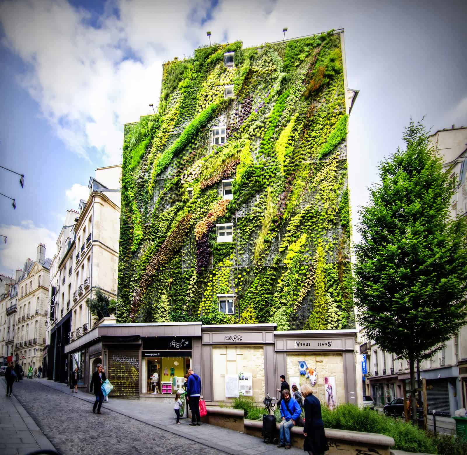 How To Make A Living Wall living wall – eco brooklyn