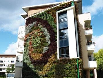 Living walls garden eco brooklyn - Building a living wall ...